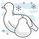 bird, christmas, partridge, pear icon
