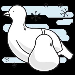 bird, christmas, partridge, pear icon