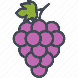 food, fruits, grape icon