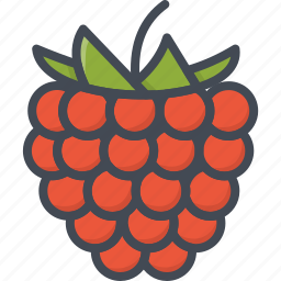food, fruits, raspberry icon