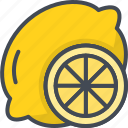 food, fruits, lemon, slice icon