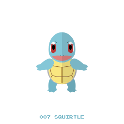 kanto, pokemon, squirtle, water icon