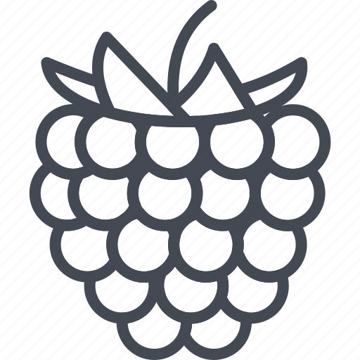 berry, blackberry, fruit, fruits icon