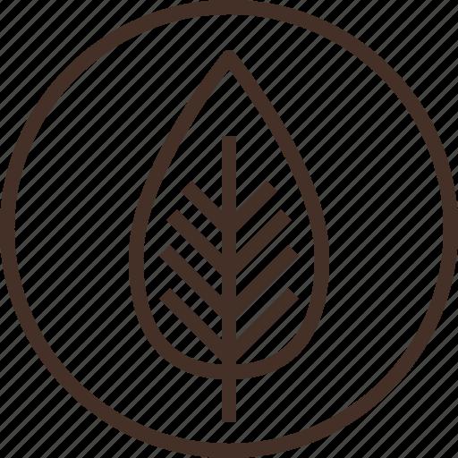 badge, botany, education, logo, science icon