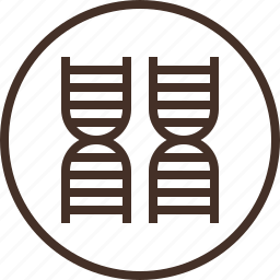 badge, education, genetics, logo, science icon