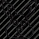 animal, bunny, critter, nature, pet, rabbit