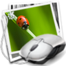 showfoto icon