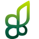 leaves, plant icon