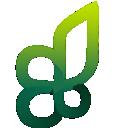 leaves, plant icon