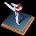px, taekwondo icon