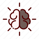 academy, brain, education, study, university