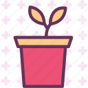 decor, flower, plant, room icon