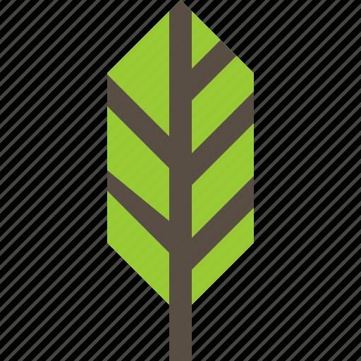 feather, plant, tree, wildlife icon