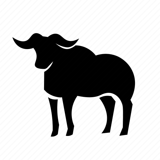 african buffalo, buffalo, cape buffalo icon