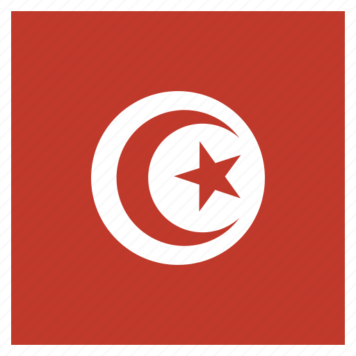 country, flag, national, tunisia icon