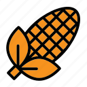 agriculture, corn, harvest, sweetcorn