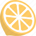 citrus food, healthy diet, lemon, lime fruit, organic fruit icon
