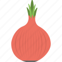 agriculture, cooking ingredient, food, onion, vegetable icon