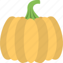 agriculture, autumn vegetable, halloween pumpkin, orange pumpkin, seasonal vegetable icon