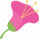 agriculture, flower, gardening, nature, seasonal flower icon