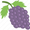 agriculture, food, fruit, grapes bunch, healthy diet icon