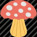 fungus, mushroom, organic food, oyster, toadstool icon