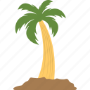 island tree, palm tree, tree, tropical tree, young palm tree icon