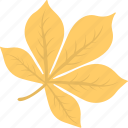 autumn leaf, autumn symbol, falling leaf, leaf, maple icon