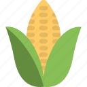 agriculture, corn, corn cob, food, maize, sweet corn icon