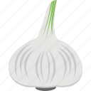 food, garlic, garlic bulb, spice, vegetable icon