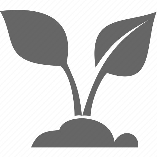 flora, leaf, nature, plant icon