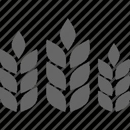 bread, cereal, flora, nature, plant, wheat icon