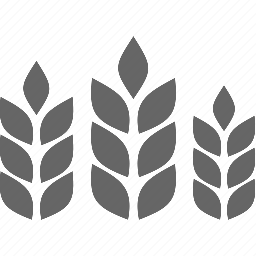 Bread, cereal, flora, nature, plant, wheat icon - Download on Iconfinder