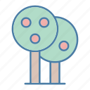 botanical, ecology, fruit tree, gardening, tree, tree fruit, yard icon