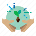 agriculture, sprout, germination, seed icon