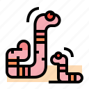 earthworm, worm, farm, insect