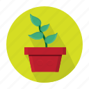 agriculture, farm, grow, plant icon