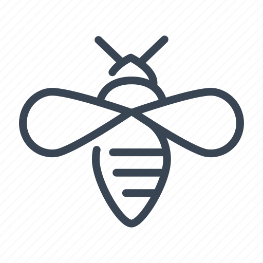 Bee, insect, bug icon - Download on Iconfinder on Iconfinder