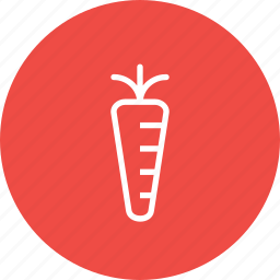 agriculture, carrot, food, garden, healthy, vegetable icon