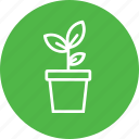 agriculture, ecology, environment, garden, leaf, plant icon
