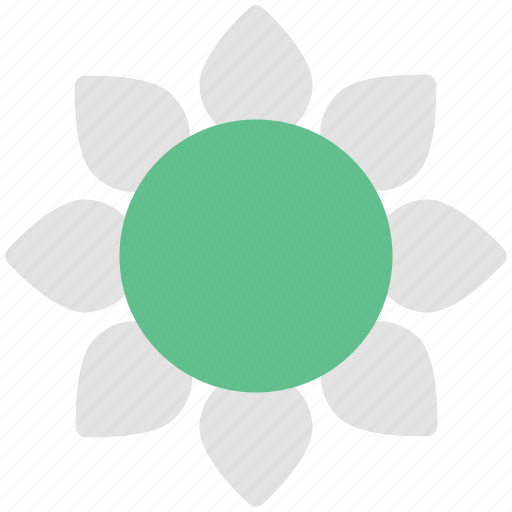 bloom, blossom, floral, flower, nature, sunflower icon