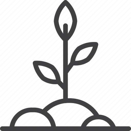 growing, plant, sprout icon