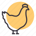 bird, chicken, egg, farm, hen, meat, poultry icon