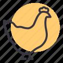 bird, chicken, egg, farm, hen, meat, poultry
