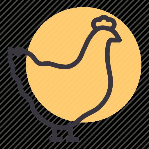 bird, chicken, egg, farm, hen, meat, poultry icon