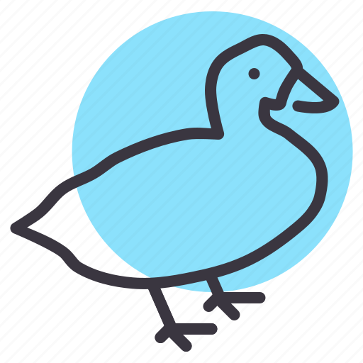 Agriculture, bird, farm, fowl, goose, meat, poultry icon - Download on Iconfinder