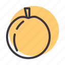 fruit, healthy, juicy, nectarine, peach icon