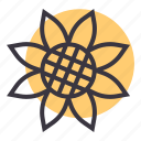 bloom, blossom, flower, garden, gardening, spring, sunflower icon