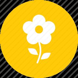 floral, flower, garden, leaf, plant, spring, sunflower icon