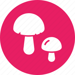 d, food, healthy, mushroom, shroom, vegetable, vitamin icon